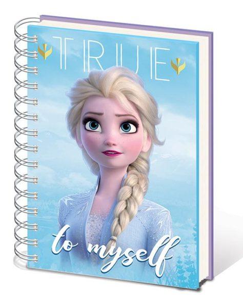 Disney : Frozen NEUF Accessoires