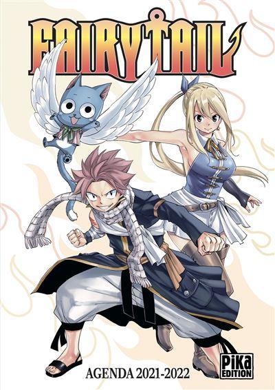 Fairy Tail NEUF Accessoires